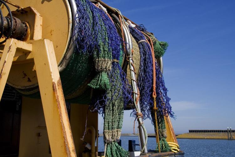 Doit-on continuer la pêche  en eaux profondes? Filets-de-p%C3%AAche