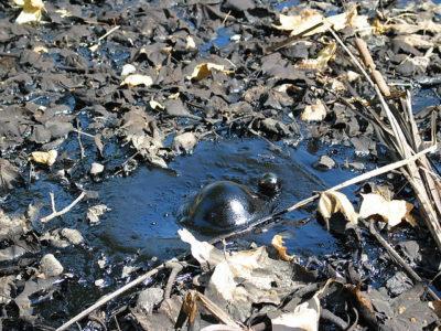 cancer-polluants-sols-air-eau