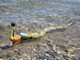 robot-serpent-pollution-lacs