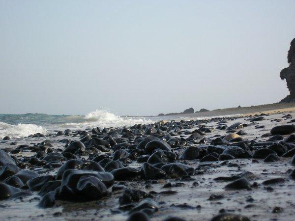 USA/marée: pêche à la crevette réduite