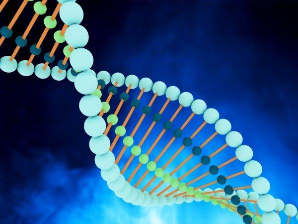 Les nanoparticules des crèmes solaires peuvent-elles endommager l'ADN ?