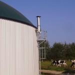 Méthanisation digesteur maïs