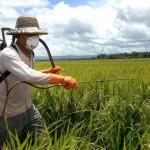Pesticides 3