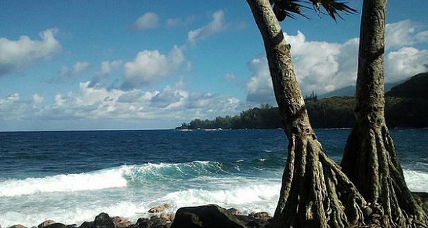 La Réunion - Anse des cascades (crédit regulator)
