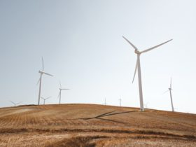 eoliennes renouvelables Inde